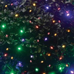 Smart Garden String Lights 100 Multicoloured LED (Battery Powered)