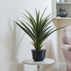 Smart Garden Indoor Faux Spiky Sisal House Plant