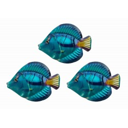 Set Of 3 Primus Blue Tang Fish Colourful Metal Garden Wall Art