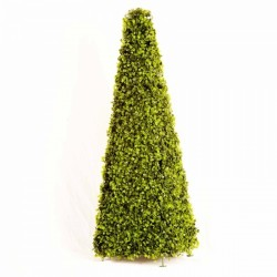 Smart Garden 60cm Boxwood Obelisk