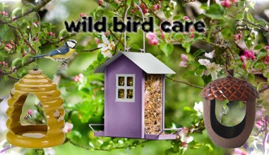 birdcare essentials